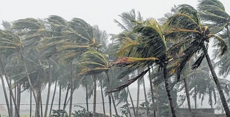Heavy rains lash Kerala, trees uprooted, houses destroyed