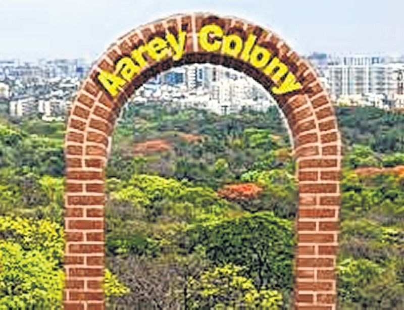 Congress Scheduled Tribes cell to hold protest against proposed Aarey zoo
