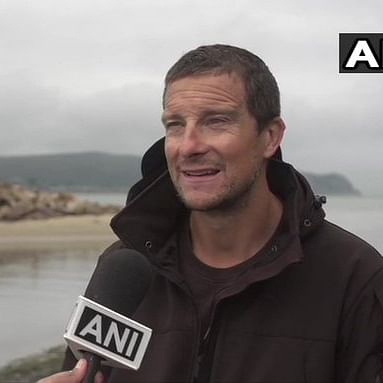 'Bear Grylls' can't say boo to a bee