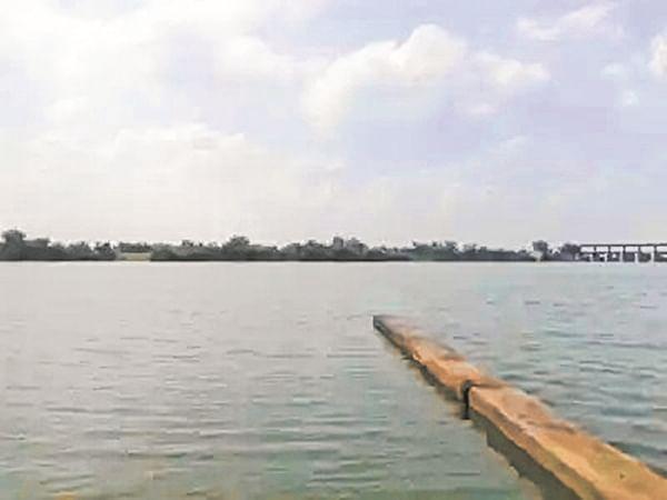 Maharashtra: Heavy rain raises water level