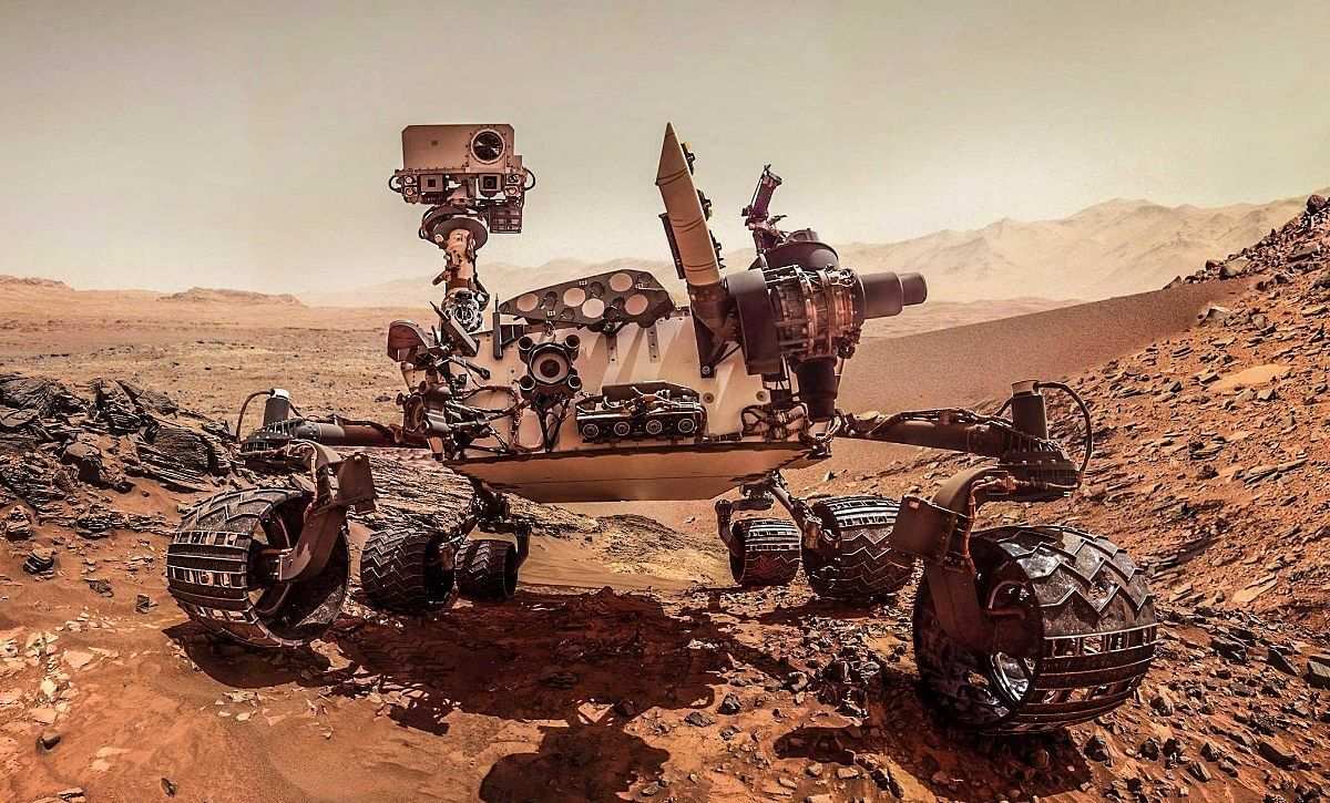 Evidence of life on Mars for bees, bugs?