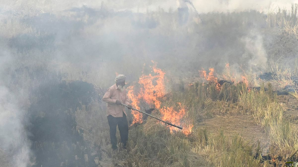 Farmers burn straw stubble after harvesting paddy crops in a field at a village near Sultanpur Lodhi.