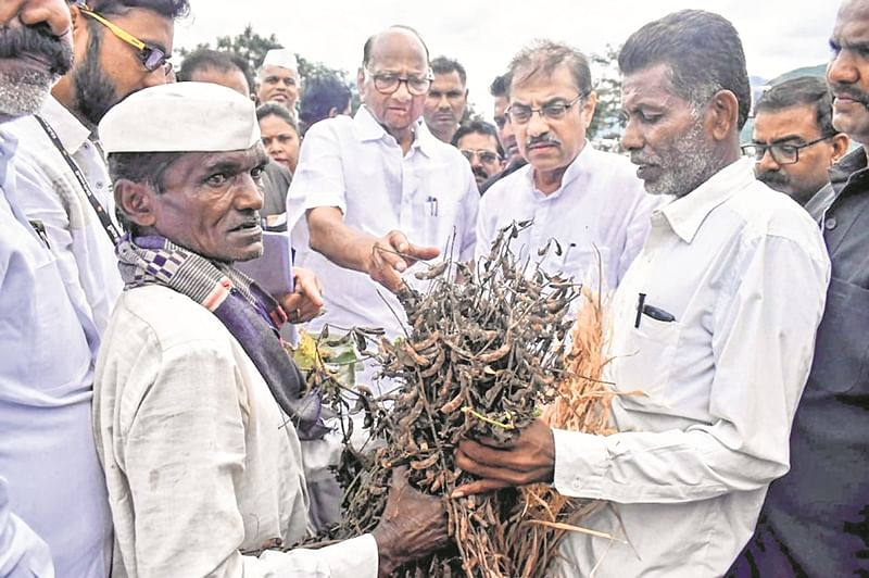 Sharad Pawar visits flood-hit areas of Maharashtra