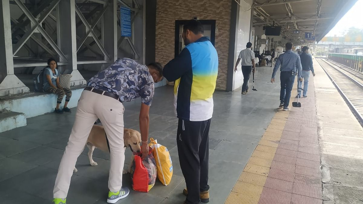 Passengers' luggage checked with help of sniffer dogs at city railway station on Saturday