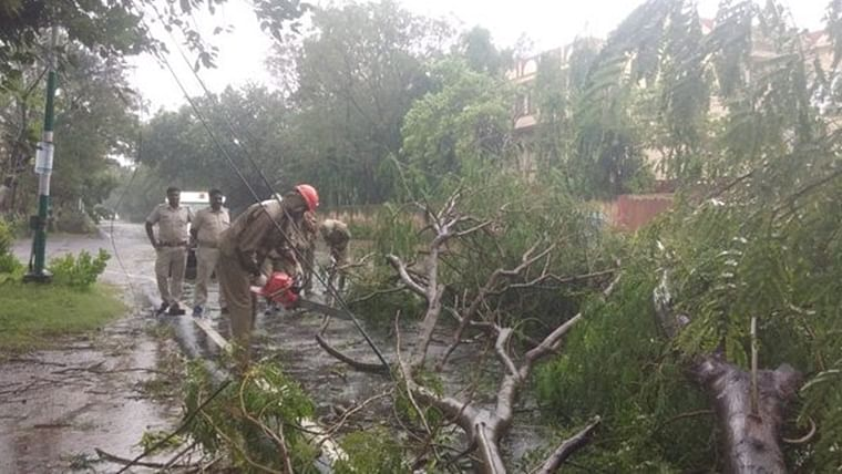 Removal of uprooted trees in the Paradeep area of Orissa as a result of Cyclone Bulbul