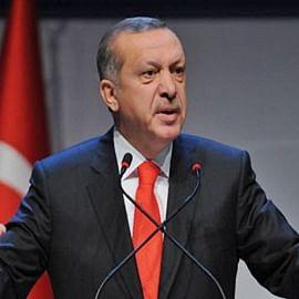 India flays Turkey's Syria military action