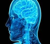 Leaky blood-brain barrier may lead to Alzheimer's disease