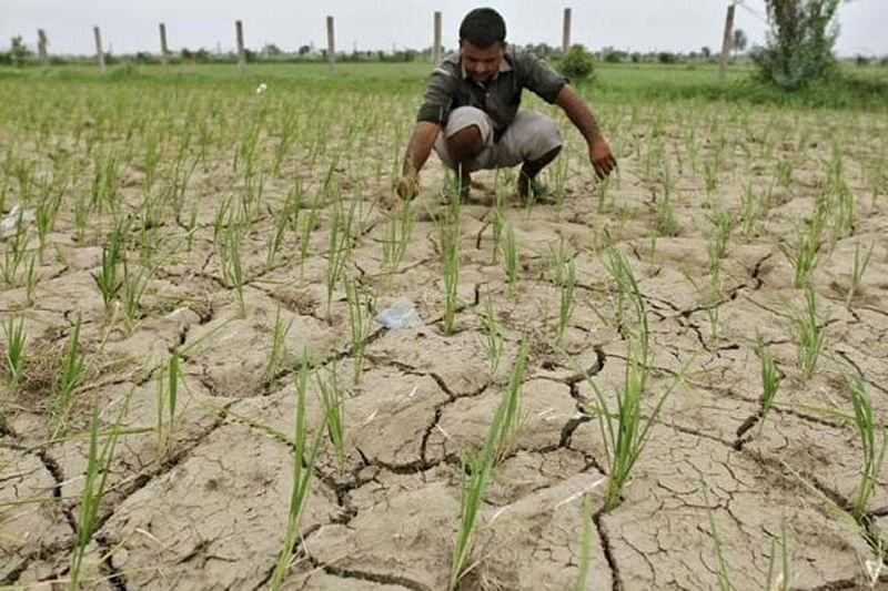 Maharashtra: Farmers get 7-day extension to apply for loan waiver