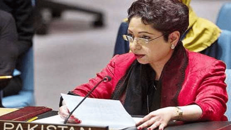Pakistan's nuclear programme cannot be limited: Lodhi