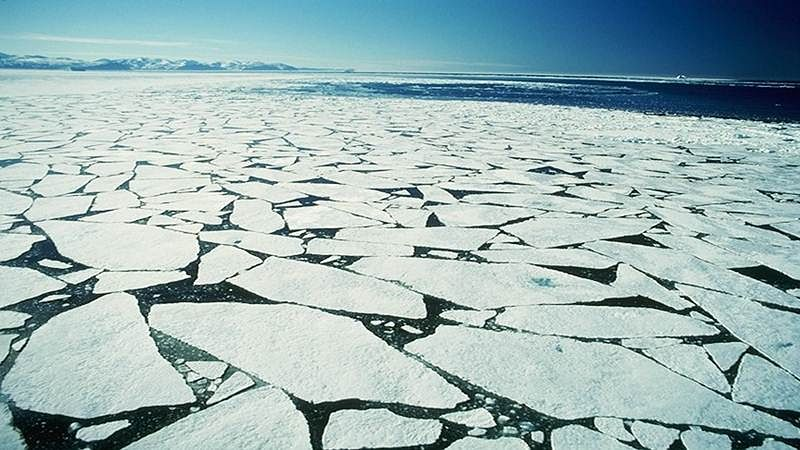 Melting of arctic ice may bring abrupt climate change