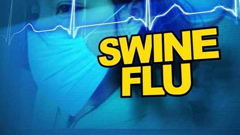 50% of all swine flu deaths in country from Maharashtra, says government