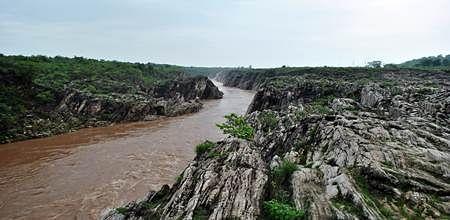 Bhopal: People take oath to  maintain flow of Narmada