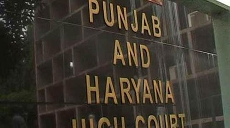 The Punjab and Haryana HC shames 'fast' victim, 3 rapists are free on bail