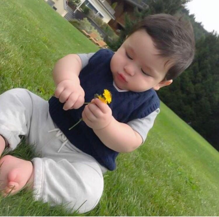 Cuteness Overloaded! This picture of Taimur Ali Khan will surely melt your heart
