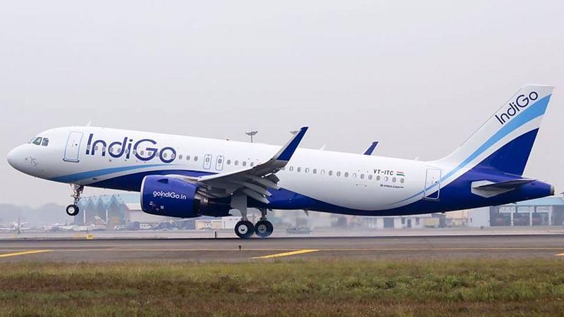 Panaji: Flight to Mumbai delayed after encountering dog hit during take off