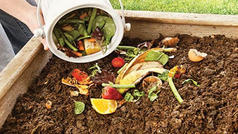 Mumbai: Waste composting starts in ten wards