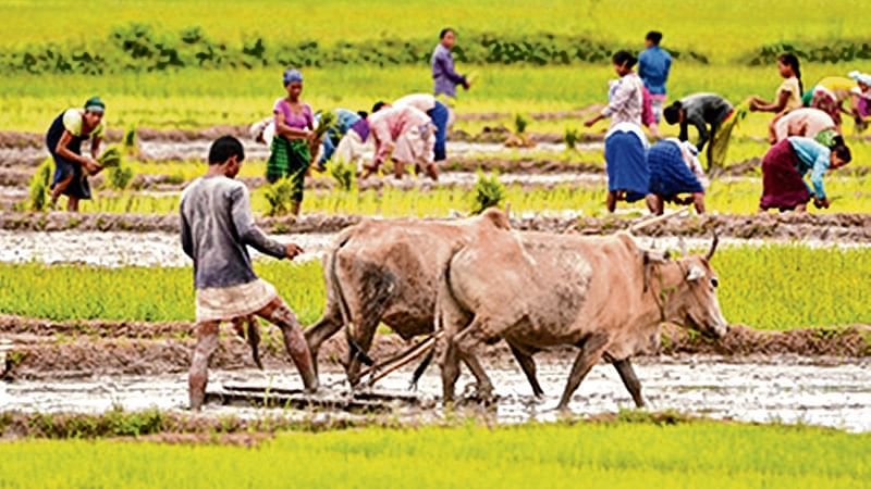 Maharashtra: 10 p surcharge to foot State billfor solar pumps