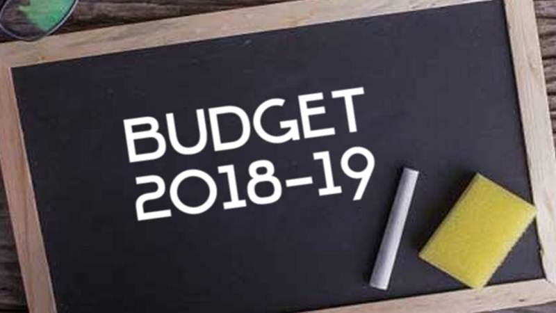 Budget 2018: Budget poll-oriented, gives little to middle class, people disappointed on tax front