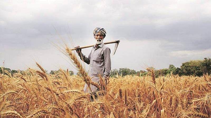 Maharashtra Congress MLAs told to visit farmers
