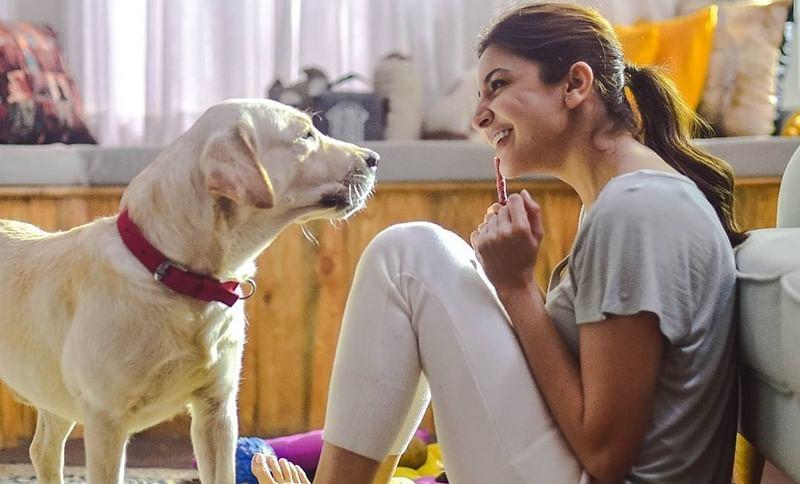 Happy Birthday Anushka Sharma: 'Zero' actress pledges to build home for stranded animals