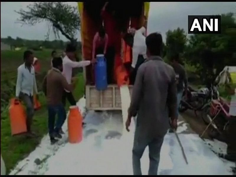 Maharashtra: Farmer's union workers spill milk on roads of Jalna as mark of protest demanding price hike