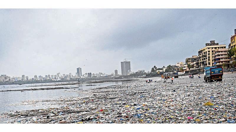 Garbage in water drains polluting Mumbai coastline: BMC