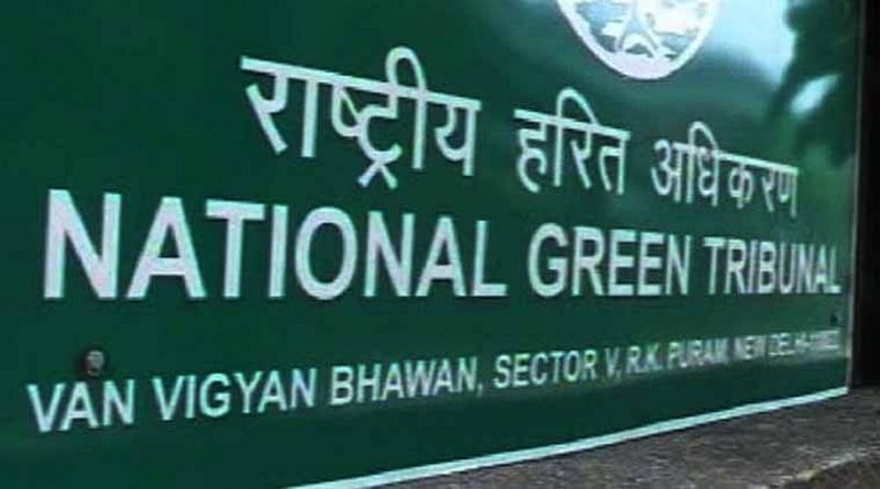 NGT imposes Rs 100 crore fine on Meghalaya govt for failing to curb illegal coal mining