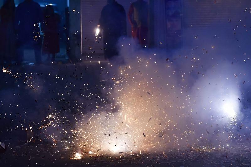Mumbai: Fewer animals injured this Diwali; birds continue to take a hit though