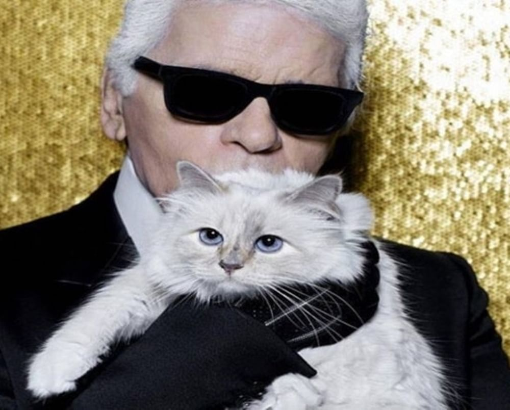 Could Karl Lagerfeld's cat Choupette inherit his millions?