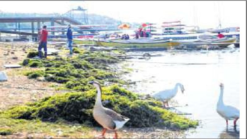Bhopal: Depleting water level hits boating facilities