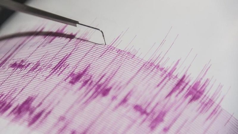 Earthquake of magnitude 4.3 hits Andaman and Nicobar Island, no casualties reported