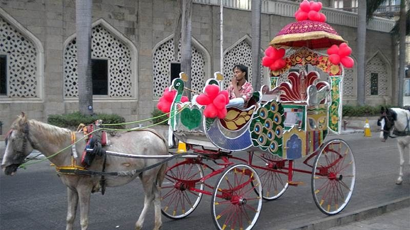 Mumbai: Victoria carriages to hit the roads soon, but without horses