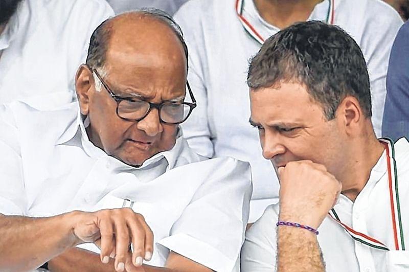 Rahul Gandhi-Sharad Pawar meeting fuels Congress-NCP merger talk